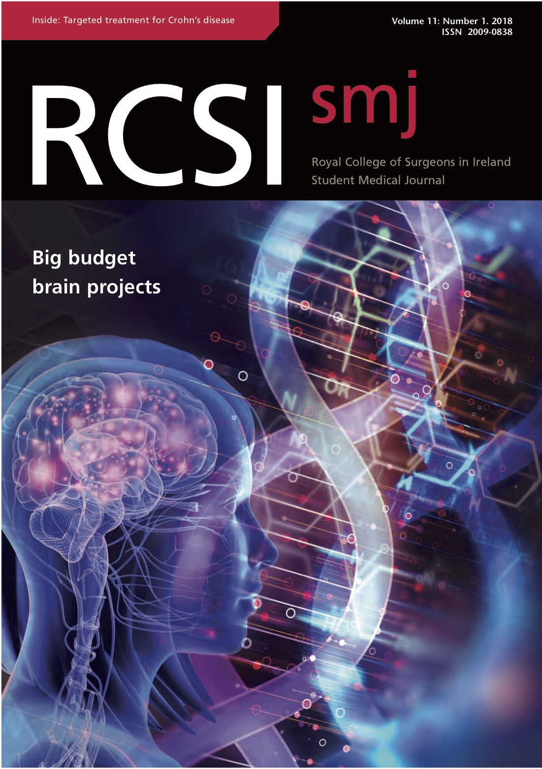 RCSIsmj Vol 11 Cover